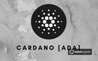What is Cardano [ADA] ? - Everything You Need To Know