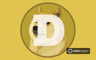 What is Dogecoin(DOGE) Coin? - Everything you need to know